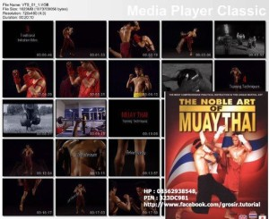 Jual DVD Tutorial Muay Thai, The Noble Art Of Muay Thai