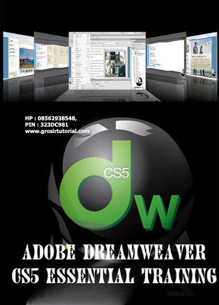 Lynda.com - Dreamweaver CS4 with CSS Essential Training (1 dvd)