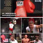 TITLE BOXING VIDEO TRAINING COMPLETE VOL 1-23 DVD