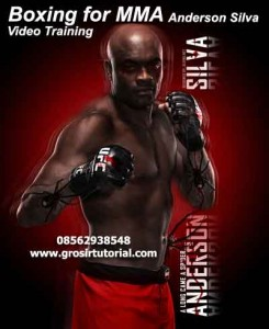 Jual DVD Boxing for MMA DVD with Anderson Silva