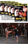 Muay Thai for MMA Volume 1-5 Mike Parker