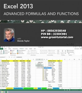 Excel 2013- Advanced Formulas and Functions – Lynda
