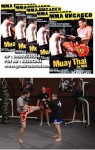 Mike Parker – Muay Thai for MMA Volume 1-5