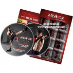 Weider Attack MMA Workout System – Scott McKendry