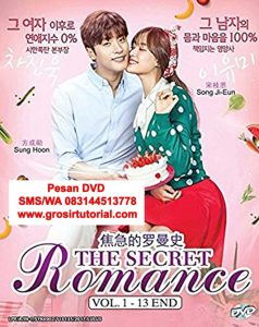 Jual DVD Korea My Secret Romance