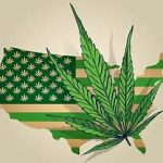 Choosing Marijuana Legalization