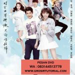 Jual DVD Mandarin Proud Of Love