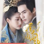 Jual DVD Mandarin Untouchable Lovers