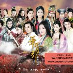 Jual DVD Mandarin City Of Desperate Love